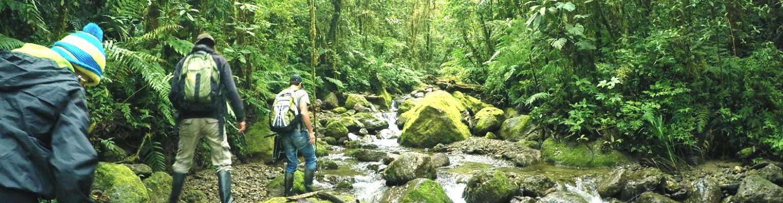 Centro de Capacitacion en Conservacion y Desarrollo Sostenible (CDS/ CNEH-Peru) Header Image