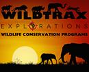 Wildtrax Explorations Logo