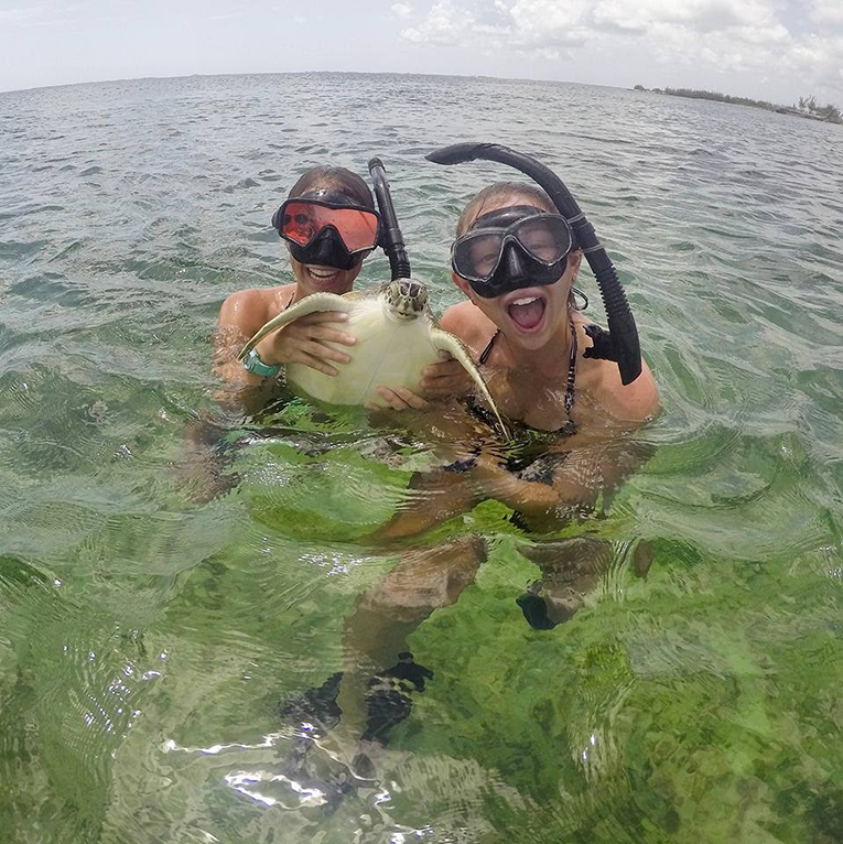 Tourists swimming with sea turtle in the Bahamas