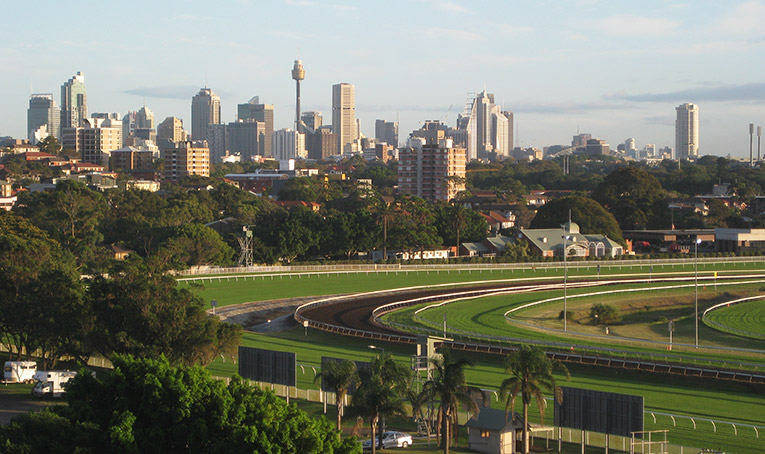 View of Randwick Racecourse and the Sydney skyline