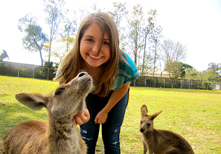 Kangaroos at Lone Pine Koala Sanctuary in Brisbane, Australia
