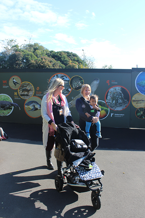 Visitors at the Auckland Zoo in New Zealand