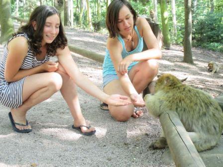Feeding a monkey on Monkey Mountain