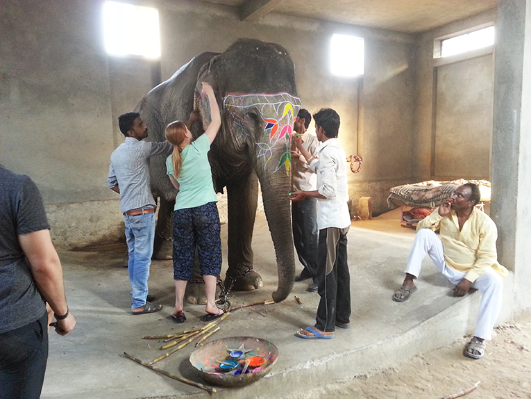 Volunteers painting an elephant in India