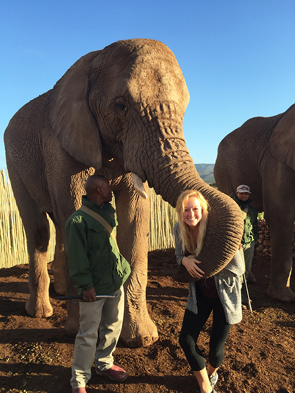 Tourists hugging an elephant in South Africa
