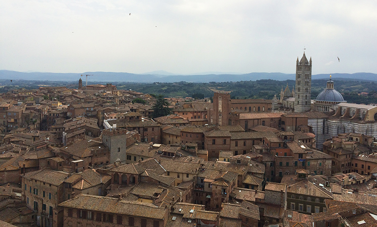 View of Siena, Italy from the Torre del Mangia