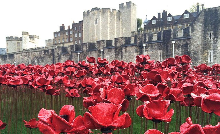 Ceramic poppies outside the Tower of London in England