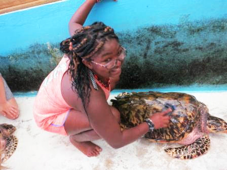 Girl petting a sea turtle at a sanctuary in the Grenadines