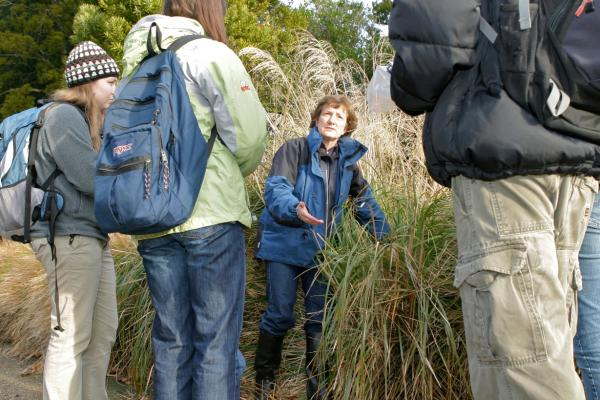 botany environmental science New Zealand University of Otago study abroad