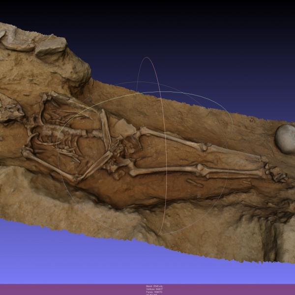 £D photogrammetric reconstruction of a skeleton