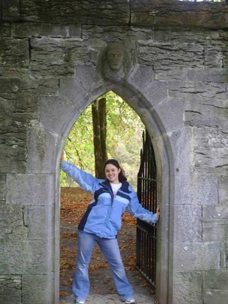 Explore the Irish countryside
