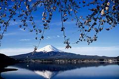Rural, culture, Japan, countryside, AEON, teach English