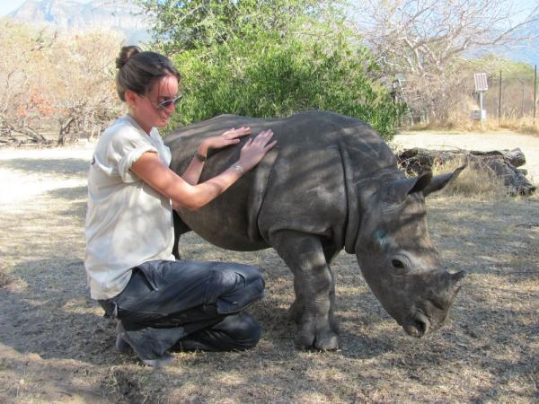 Volunteer with a hippopotamus in South Africa