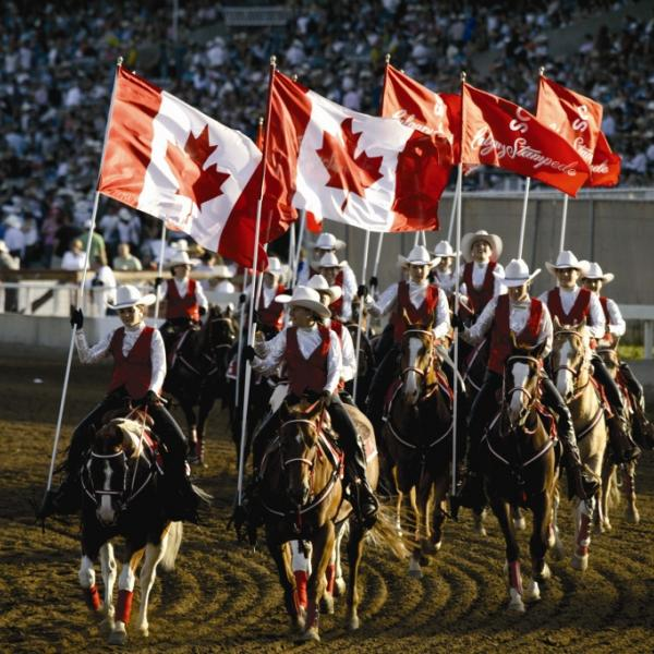 Calgary Stampede with Working Holiday in Canada