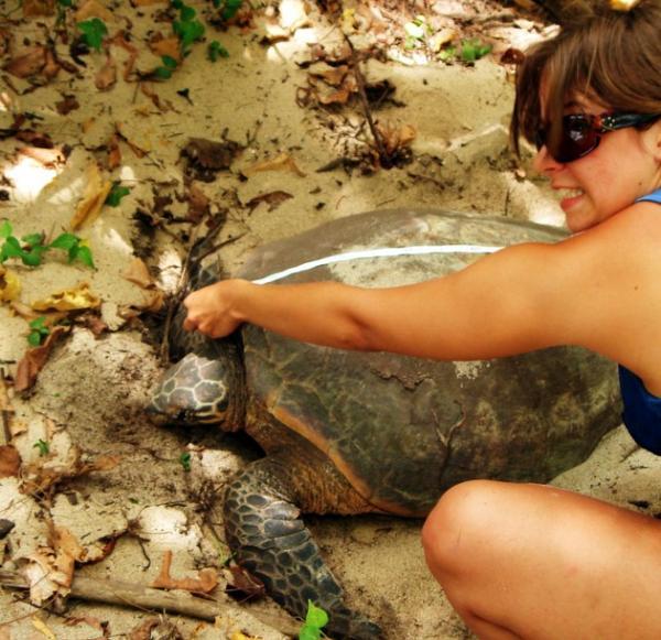 Costa Rica - Sea Turtle Conservation