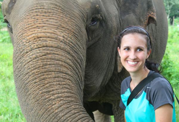 Service learning at the Elephant Nature Park in Chiang Mai, Thailand