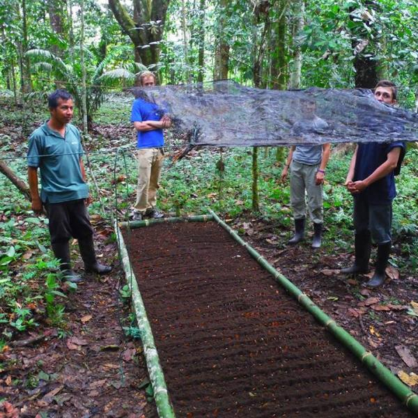 amazon-volunteer-work
