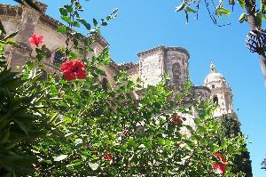study in Malaga, Spain