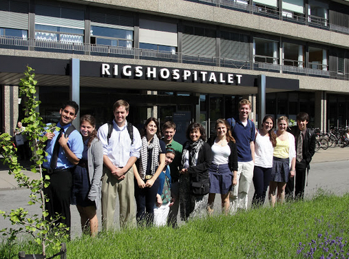 Study Public Health in Copenhagen, Denmark