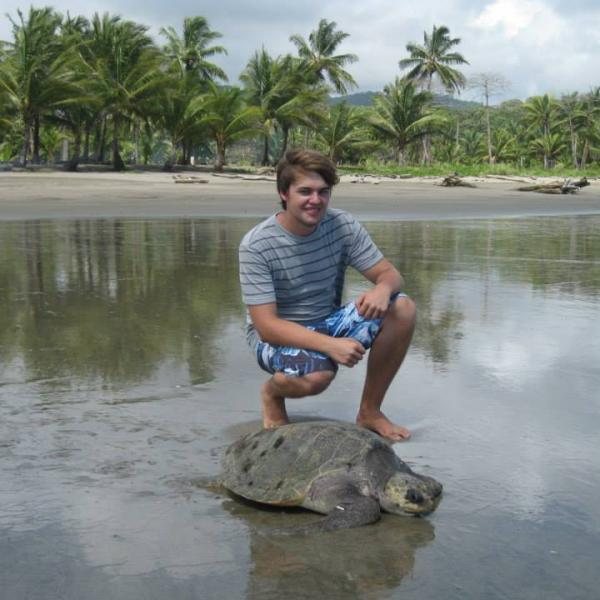 Volunteering with turtles in Costa Rica