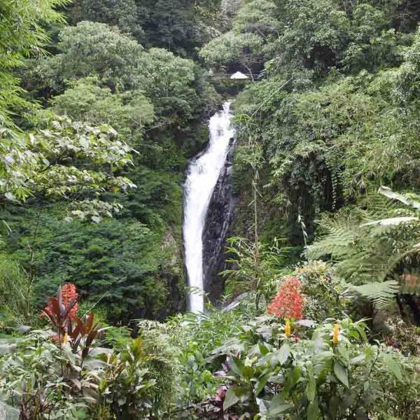 Lovina Waterfall