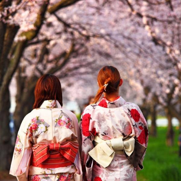 Women in Traditional Dress, Tokyo, Japan