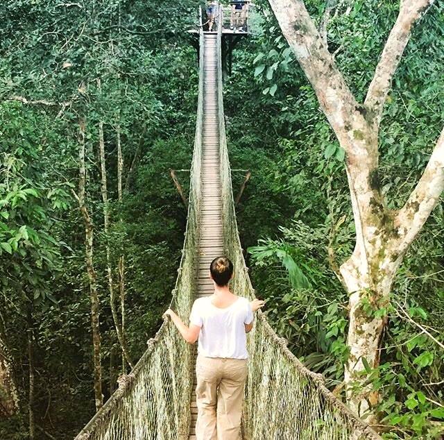Rope bridge in Peru