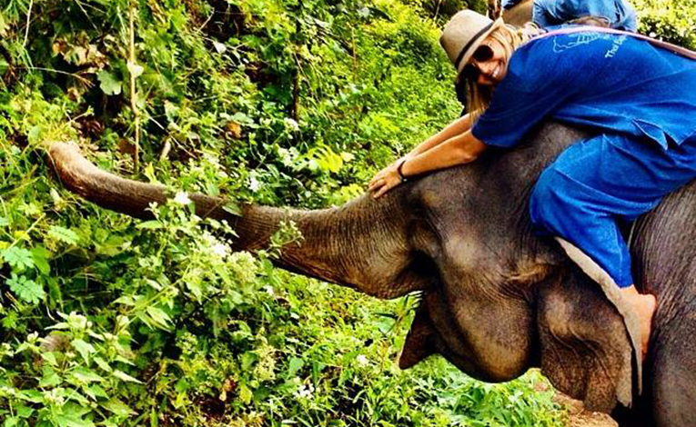 Girl smiling and riding an elephant in the rainforest