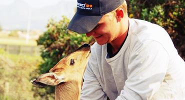 Getting up close and personal with a duiker antelope through one of South Africa's  nature reserve internship programs