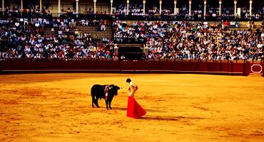 A Traditional Spanish Bull Fight in Spain