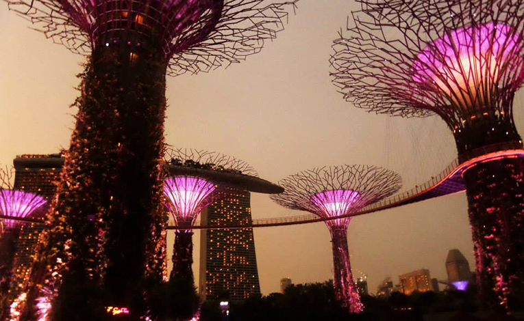 The magical Gardens by the Bay