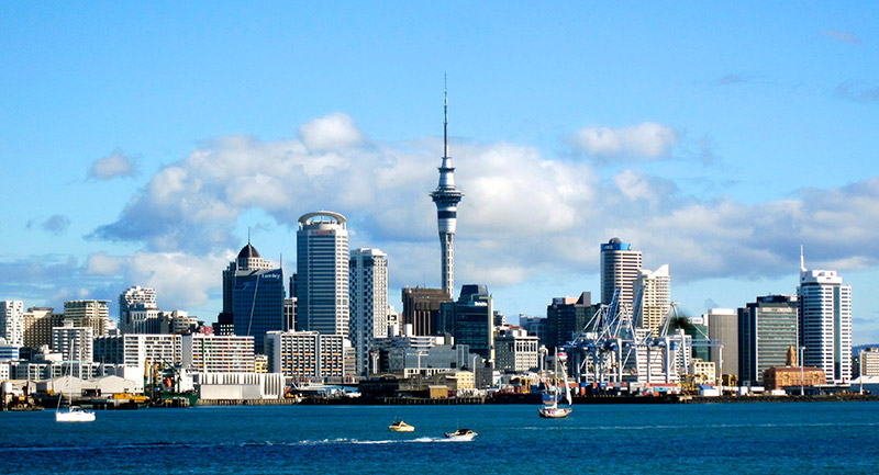 A City Skyline in New Zealand