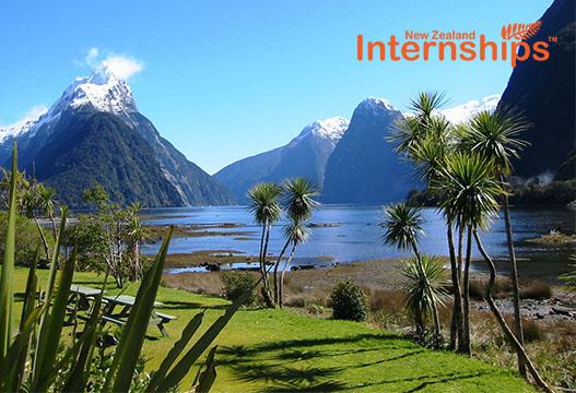 Coastal view in New Zealand