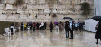 The Western Wall in Jerusalem is a remnant of the ancient wall that surrounded the Temple Mount's courtyard and is one of the most sacred sites recognized in the Jewish faith. Volunteering in Israel will surround you with ancient sites like these.