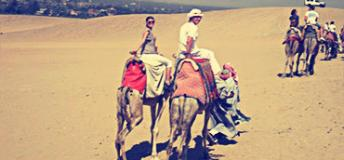 Camel Back Riding in Egypt. Photo by Donna Perry