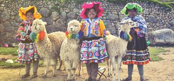 Three women in traditional dresses with llamas.