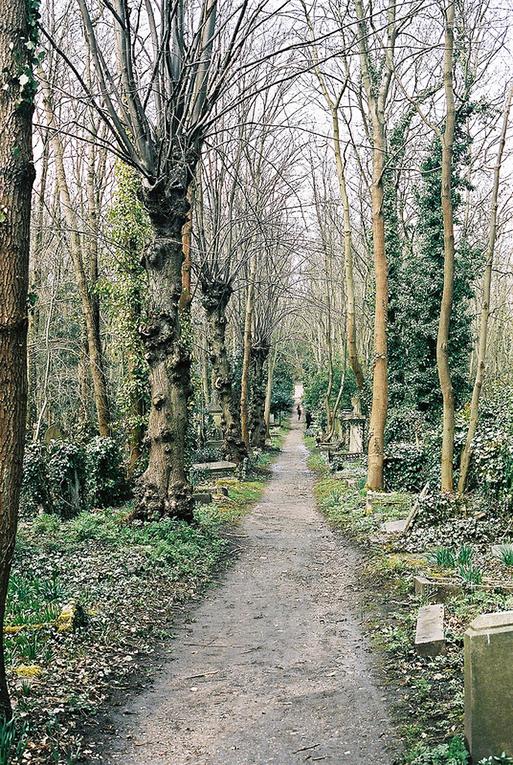 Cemetery sidewalk