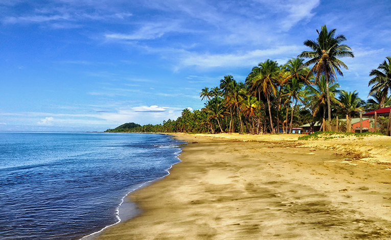 Fiji beach lined with palm trees