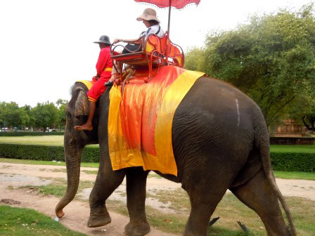 Elephant Riding in Southeast Asia