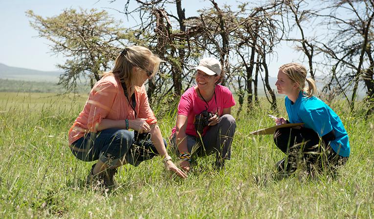 Wildlife conservation volunteers in action in Africa